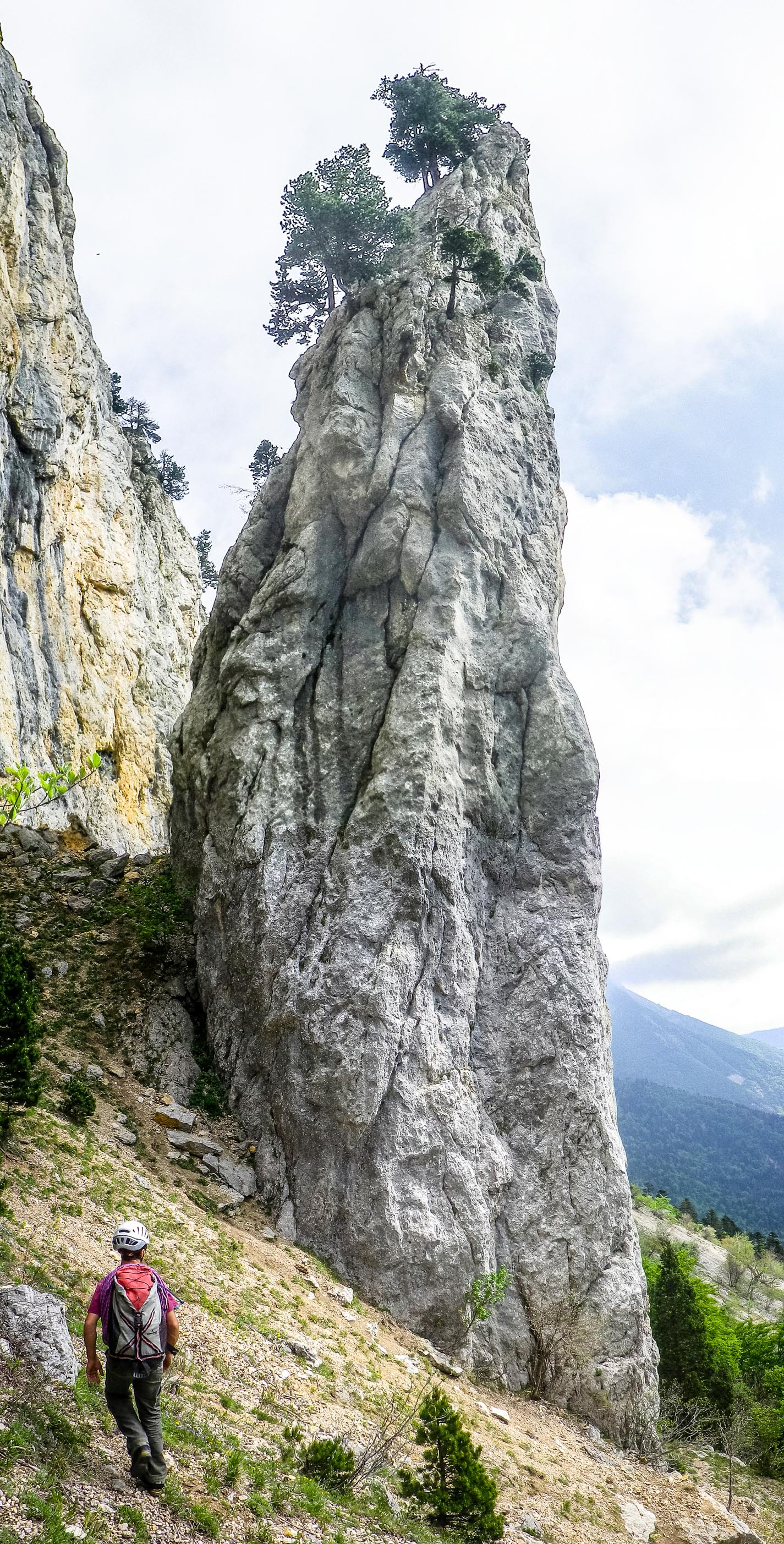 L'aiguille en question